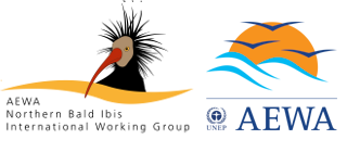 AEWA International Working Group